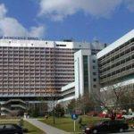 Volná místa: Fakultní nemocnice Brno